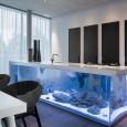 La cuisine aquarium de Robert Kolenik